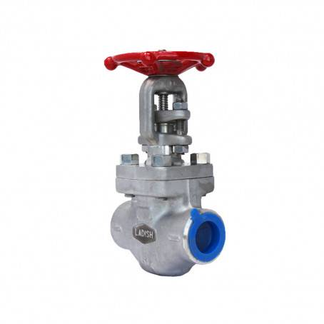 Forged Stainless & Alloy Valves